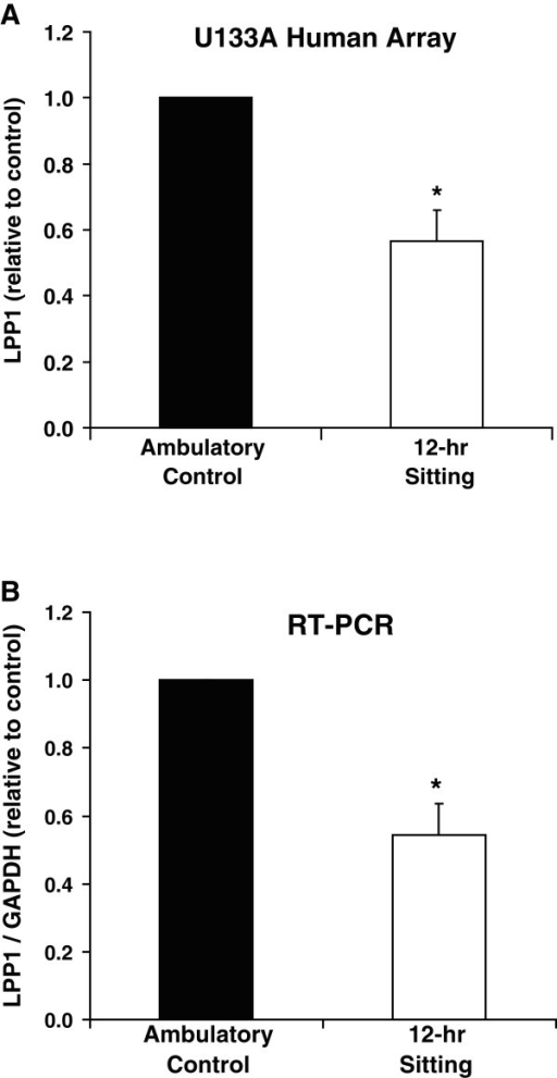 Suppression of LPP1 mRNA expression in human skeletal muscle caused by 12 hours of physical inactivity. Results are presented from (A) U133A human microarray data and (B) reverse transcriptase PCR. GAPDH mRNA expression was not affected by sitting. Results are expressed as mean ± SE. * vs. Ambulatory Control, p < 0.05.