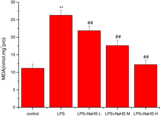 Effect of H2S on the content of MDA in lung mitochondria in rats. Compared with control group, the content of MDA was significantly increased (P < 0.01) in lung mitochondria in LPS injury group. Compared with LPS injury group, the content of MDA was significantly decreased in LPS + low, middle and high dose NaHS groups (P < 0.01). **P < 0.01 vs control; ##P < 0.01 vs LPS. control: control group. LPS: LPS injury group.LPS+ NaHS L: LPS + low-dose NaHS group.LPS+ NaHS M: LPS + middle-dose NaHS group.LPS+ NaHS H: LPS + high-dose NaHS group.