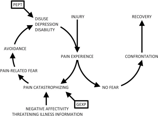 The fear-avoidance model, showing the targets of Pain E
