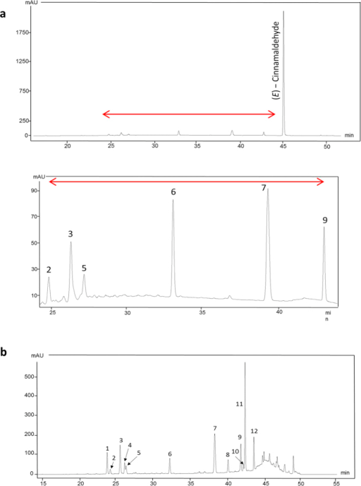 HPLC chromatograms of cinnamon bark extract.(a) HPLC chromatogram of cinnamon bark extract: Top panel shows detection of trans-cinnamaldehyde. Bottom panel shows larger version of the area indicated by the red arrow in top panel, showing 2, A-type procyanidin (PC) dimer; 3, A-type PC trimer; 5, A-type PC trimer; 6, internal standard; 7, cis—Cinnamic acid; 9, trans—Cinnamic acid. (b) HPLC chromatogram of thiolysed cinnamon bark extract (BM = benzylmercaptan adduct): 1, Catechin; 2, A-type PC dimer; 3, A-type PC trimer; 4, Epicatechin; 5, A-type PC trimer; 6, Internal standard; 7, cis—Cinnamic acid; 8, A-type PC—BM trimer; 9, trans—Cinnamic acid; 10, cis Catechin—BM; 11, Epicatechin—BM; 12, A-type PC—BM dimer.