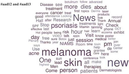 Popular topics at the 2012 and 2013 American Academy of Dermatology Annual Meetings.Word clouds exclude prepositions, conjunctions, articles, numbers, Twitter usernames, and official conference-specific hashtags.