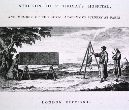 <p>Use of camera obscura to depict part of a skeleton.</p>