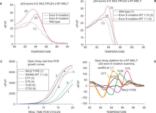 Multiplex s-RT-MELT or OpenArray™-based s-RT-MELT. (A) Melting curves obtained following multiplex s-RT-MELT for mixture of p53 exons 5–9 (exon 8 mutation, curve 2) or exon 9 mutation (curve 3) or wild-type (curve 1). (B) Melting curves obtained following multiplex s-RT-MELT for mixture of p53 exons 5–9 (exon 8 mutation, curve 3) or 10-fold diluted into wild-type exon 8 mutation (curve 2) and wild-type (curve 1). (C) OpenArray™ based s-RT-MELT PCR growth curves for p53 exon 8 using DNA from lung and colon surgical specimens and cell lines. (D). Melting curves obtained following OpenArray™ based s-RT-MELT of p53 exon 8 using DNA from lung and colon surgical specimens and cell lines.