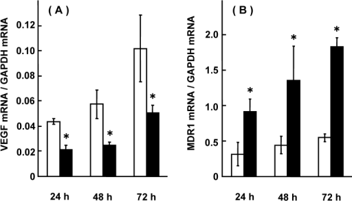 Effect of VEGF siRNA on mRNA expression of VEGF and MDR1 in HCT-15 cells. HCT-15 cells were treated with VEGF siRNA for 24, 48, and 72 hrs, and mRNA expression levels of VEGF and MDR1 were assessed. The results were expressed as the mean ± SD of 3-4 independent experiments. (A) VEGF mRNA, (B) MDR1 mRNA. Open column: without VEGF siRNA, closed column: with VEGF siRNA. The scramble siRNA for VEGF had no effect on the mRNA expression of VEGF or MDR1. *: p < 0.05, when compared with no VEGF siRNA.