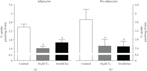 Uptake of the iodothyronine L-T3 into 3T3-L1 adipocytes and pre-adipocytes. [125I]-T3 uptake was measured at 50 nM over 10 minutes in the absence (control) or presence of 10 μM unlabelled T3 or 10 mM leucine in the uptake buffer. Values are expressed ± SEM of 6–12 measurements. *P < .05; value significantly different from control using Dunnett's Multiple Comparison Test.
