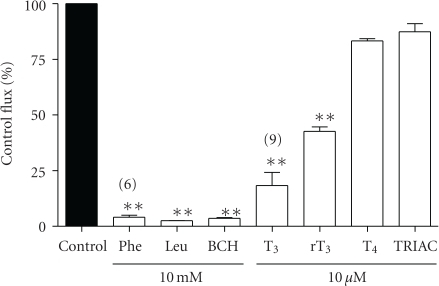 Effect of amino acids and iodothyronines on uptake of phenylalanine into 3T3-L1 adipocytes. [3H]phenylalanine uptake was measured at 5 μM over 3 minutes in the absence (control) or presence of 10 μM iodothyronine or 10 mM amino acid in the uptake buffer. Values are expressed ± SEM of 3 measurements (except where indicated) as % of the control flux. **P < .01; value significantly different from control using Dunnett's Multiple Comparison Test.