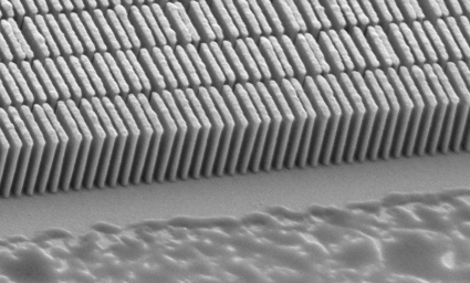 SEM image of the Au grating (triangles in Fig. 5 ▶) after irradiation.