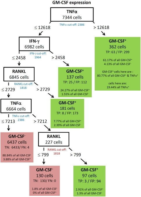 Best decision tree for the classification of cells as positive or negative for GM-CSF expression. Cells are first classified based on the MFI values of TNF-α. The blue colored TNF-α cut-off value indicates that the split value is high above the cut-off value. Therefore, only a proportion of the cells which express TNF-α are routed to the right leaf. A closer look at this leafs shows that due to the split value high above the cut-off value only 19.44% of all TNF-α positive cells are contained in this leaf. But this leaf captures 61.17% of the GM-CSF positive cells. The leaf also contains the information that this leave captures 80.77% of all GM-CSF and TNF-α positive cells. Form the root (top) cells with a TNF-α MFI value equal or below 12618 are routed down to the next inner node. This node splits the cells on the MFI value of IFN-γ. Again, the blue colored cut-off values indicates that not all IFN-γ positive cells in this node are routed to the leaf at the right. This leaf also classifies cells as GM-CSF positive. This leaf captures less of the GM-CSF positive cells – around one out of four. The other two leafs which give a positive classification captures even less of the GM-CSF positive cells, but summed up the four leaves which give a positive classification captures 96.12% of all GM-CSF positive cells.