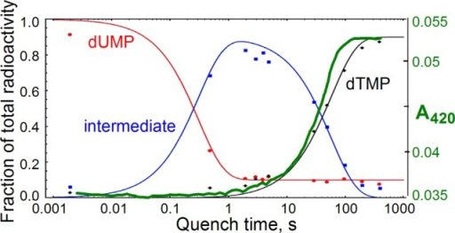 Single-turnoverFDTS reaction kinetics overlaid with stopped-flowflavin absorbance trace (green, this work). Reduced flavin (FADH2) has no 420 nm absorbance, while oxidized flavin (FAD) does.Adapted with permission from ref (11).