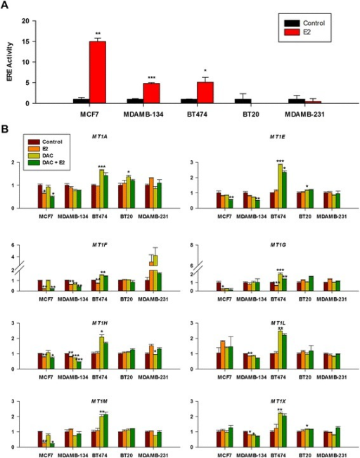 Differential response to E2 suppression and DAC activation of MT1 gene expression is seen in ERα + cell lines but not in ERα − cell lines. (A) Luciferase activity of ERE reporter vector normalized to Renilla reporter activity in luminal and basal breast cancer cell lines. (B) MT1 expression was carried out by RT-qPCR following E2 and/or DAC treatments as described in the Methods section.