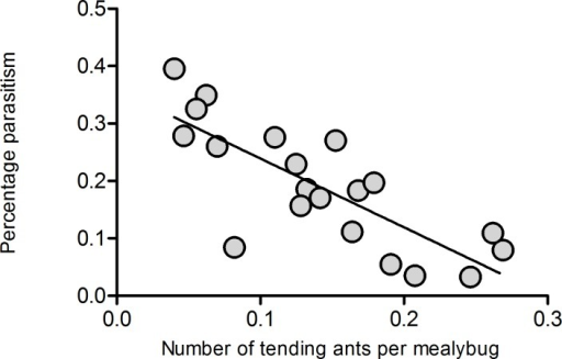 Relationship between percentage of parasitism and ant tending level.* above bars indicates statistically significant differences between the two treatments ( P<0.05), different letters above bars indicate significant differences among the treatments (P<0.05).