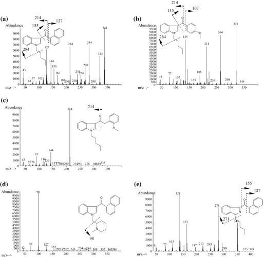 Typical mass spectra of synthetic cannabinoids obtained by GC–MS. a JWH-018, b RCS-4, c JWH-250, d AM-1220, e THJ-018, f APICA, g NNEI, h ADBICA, i QUPIC (PB-22), j ADB-PINACA, k AB-CHMINACA