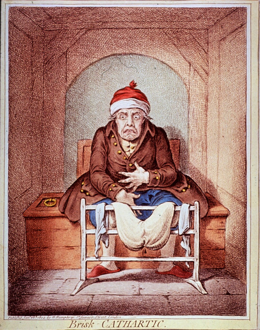 <p>A man is sitting in a &quot;water-closet.&quot;</p>