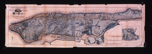 <p>Sanitary &amp; topographic map of the city and island of New York, 1865.</p>