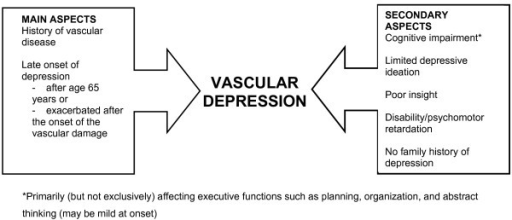 Clinical characteristics of vascular depression.