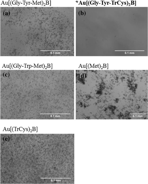 PBH-capped AuNPs (100 μg/ml) after 24-h incubation in EMEM/S- as viewed using optical microscope. (a) Au[(Gly-Trp-Met)2B], (b) Au[(Gly-Tyr-TrCys)2B], (c) Au[(Gly-Tyr-Met)2B, (d) Au[(Met)2B and (e) Au[(TrCys)2B]; asterisk and bold letters are used to signal the most stable AuNP.