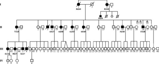 Pedigree showing an extended SCA13 Filipino family. Filled black symbols are clinically affected individuals with known c.1259G>A genotype. Gray symbols represent asymptomatic examined individuals with known genotype. White insets indicate two wild-type alleles. Of the remaining 12 at-risk individuals, nine are c.1259G>A heterozygotes and three are wild type. They are not identified for privacy concerns. Bold numbers indicate the ages at examination and disease onset