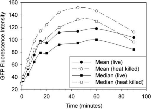 Uptake of live vs. heat killed cells of GFP-EcO157 by Tetrahymena monitored over time as the mean and median green fluorescence intensity. Open symbols indicate the case where the E. coli were heat killed prior to feeding. Initial EcO157 concentration was 106 cells mL−1. Predator-prey ratio was 1:100.