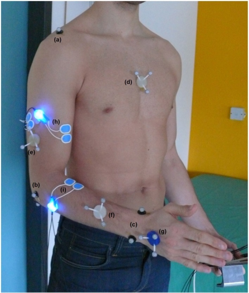 Full marker setup for kinematic analysis of upper extremity including joint marker of acromion (a), elbow joint (b) and wrist (c) as well as marker triplets on the segments thorax (d), upper arm (e), forearm (f), and hand (g). Bipolar sEMG electrode placement including pre-amplifier with blue LEDs of biceps brachii (h) and brachioradialis (i).