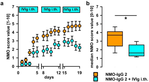 i.th. application of IVIg attenuates NMO-IgG 2 induced disease symptoms. (a) IVIg co-administered i.th. from day 1 of i.th. application of NMO-IgG delayed the onset and reduced the severity of disease symptoms (Two-way ANOVA with Bonferroni post hoc test p < 0.001 for group comparison). Breaks on the X-axis indicate 2 day-pauses of NMO-IgG; (b) the median disease score over the entire experiment was significantly smaller in the animals treated with i.th. IVIg (Mann-Whitney U test, * p ≤ 0.05; plots show median ± 25th and 75th percentiles with whiskers of the 5th and 95th percentiles).