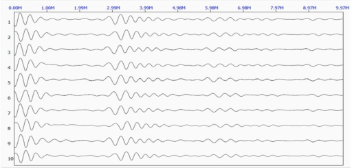 Original waveforms of the reflected stress wave at Site 2.