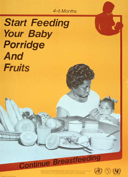 <p>Predominantly orange poster with black lettering.  Title at top of poster along with a silhouette of a mother preparing to breastfeed her baby.  Dominant visual image is a black and white photo reproduction featuring a mother spoon-feeding her infant daughter.  An array of fruits and cooked cereals sits on a table in front of them.  Caption below photo.  Publisher and sponsor information at bottom of poster.</p>