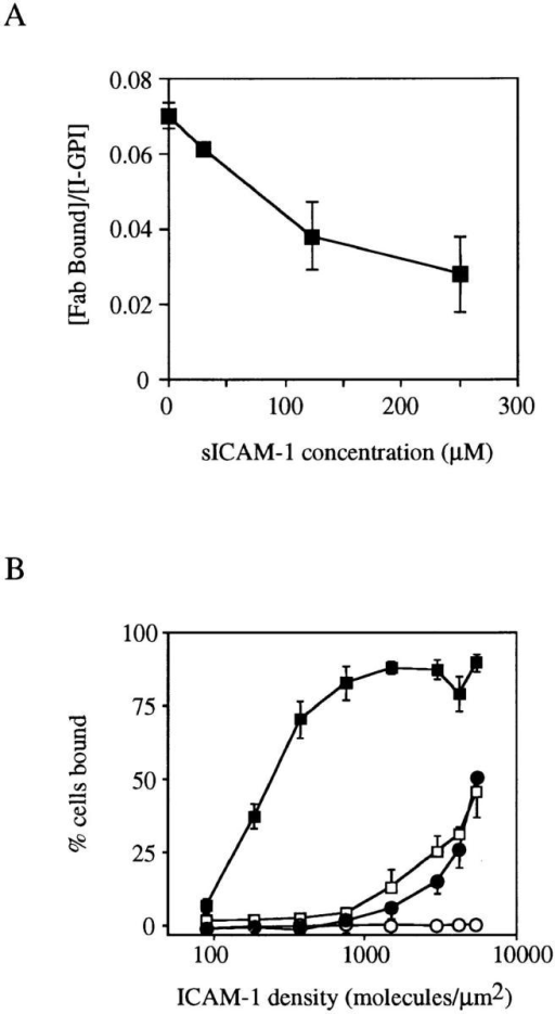 Competition of sICAM-1 with 125I TS1/22 Fab fragments  for binding to I-GPI (A) and static adhesion assay of SKW3 cells and I-GPI  cells to ICAM-1 coated on plates (B). (A) I-GPI E6 cells were incubated  with the indicated concentrations of sICAM-1 and 125I TS1/22 Fab fragments (2 nM) for 20 min at room temperature. Cells and supernatant  were separated by centrifugation through an oil cushion. The binding of  TS1/22 Fab fragments is expressed as a fraction of I domain sites. Protein  concentration in the assay was kept constant with ovalbumin. The result  represents one experiment out of three. (B) Unstimulated SKW3 cells  (open squares), SKW3 cells preincubated with 50 ng/ml PMA (filled  squares), and I-GPI E6 cells (closed circles) or I-GPI E5 cells (open circles)  were tested for adhesion to ICAM-1–coated plastic at 37°C in RPMI-1640, 2% BSA. Purified ICAM-1 was coated on polystyrene at the indicated density as determined by immunometric assay. SKW3 cells were labeled with calcein AM and BHK cells with BCECF.