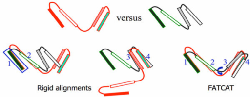 Rigid versus flexible alignment of aligned fragment pairs (AFPs).