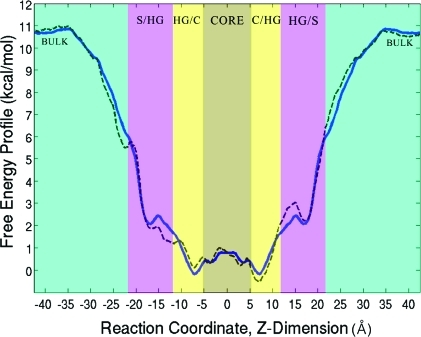 Free energy profile (symmetric-heavy blue line, asymmetric-dashed line) of the peptide as a function of position along the z dimension (negative/positive values correspond to the lower/upper leaflets, respectively). Aqua green on either side of the simulation box denotes regions of bulk solvent. Pink marks the regions of the solvent/lipid headgroup interface (S/HG in the lower leaflet, HG/S in the upper). Beige indicates the headgroup/core interface (HG/C in the lower leaflet, C/HG in the upper). The light brown region centered on the zero depicts the membrane core. See the text for further discussion and the computed changes in free energy.
