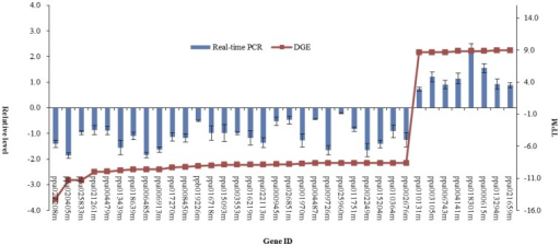 Digital gene expression tag profiling and quantitative real-time PCR analysis of the expression of randomly selected genes.All real-time PCR reactions were repeated three times and the data are presented as the mean ± SD. The x-axis indicates the different genes. The y-axis shows the expression levels: the left shows the relative expression level by qRT-PCR and the right shows tag number per million tags by DGE.
