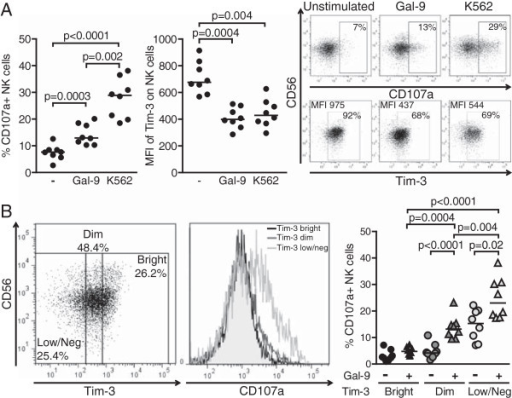 Incubation with soluble Gal-9 increases NK cell function and decreases surface expression of Tim-3. (A) Dot plots represent the percentages of CD107a + NK cells and the MFI of Tim-3 on NK cells from 8 healthy individuals upon pre-activation with 1 ng/mL of IL-15 and IL-18 overnight followed by stimulation with either 0.9 μg/mL of soluble Gal-9 for another 16 h or K562 target cells at an effector:target ratio of 10:1 for 6 h. Representative primary flow cytometry panels show CD107a upregulation (upper panel) and Tim-3 expression (lower panel) on NK cells that were left unstimulated, or were activated as indicated. (B) Unstimulated or Gal-9-activated NK cells were divided into Tim-3bright, Tim-3dim and Tim-3low/neg so that the bright and the low/neg subpopulations each consistently represents about 25% of the bulk NK cells, and subsequently analyzed for CD107a expression. Representative primary flow panel shows an example of subdivision of NK cells according to Tim-3 expression. Percentages of positive NK cells and median fluorescence intensity are indicated. Histograms display CD107a upregulation in each subset following incubation with soluble Gal-9. Horizontal lines indicate the median percentages. Statistically significant difference reached when p < 0.05 is indicated.