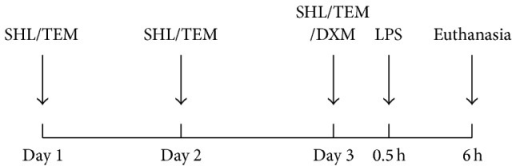 Schedule of pretreatment with SHL and positive drugs and mice induced by LPS.
