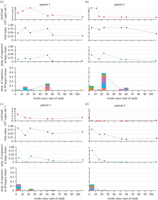 BCR diversity statistics and viral load values for patients 1–4 (a–d) over the study period of 108 weeks. Patients 1–3 were untreated, while patient 4 received ART until week 48. Four plots are provided in each panel. The top plot shows viral load, with each point representing a clinical sample. The second plot shows vertex Gini index values of the BCR sequences obtained at each time point. The third plot shows the proportion of reads at each time point that belong to 'large' clones, i.e. those that occupy more than 0.1% of reads at any time point. The bottom plot in each panel shows the proportion of all reads at each time point that are occupied by the 20 largest clones observed across all time points. Each of the 20 largest clones is represented by a bar of a different colour, and lines connect bars at adjacent time points that represent the same clone.