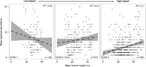 Mean dependent plant abundance correlated to mean branch height across the different hurricane impact levels. The dashed line represents the line of best fit and the grey-shaded areas are the 95 % confidence limits. The number of branches that were included in the analysis between the different impact levels is noted at the bottom of each graph. Note that only a total of 60 branches were randomly selected for the final analysis.