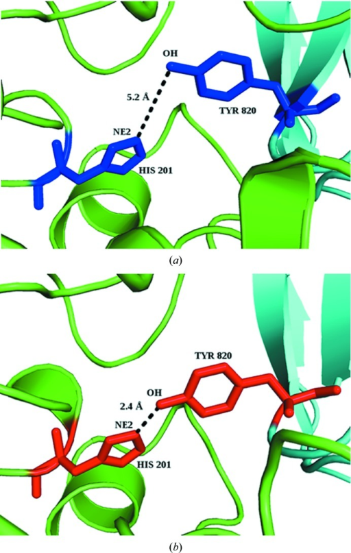Hydrogen-bond geometries (distances shown) in α-amylase (green) and tendamistat (cyan) between His201 NE2 and Tyr820 OH for (a) the pseudo-complex and (b) the experimental complex [PDB entry 1bvn (Wiegand et al., 1995 ▸); PDB entries 1pig (Machius et al., 1996 ▸) and 1hoe (Pflugrath et al., 1986 ▸) are the U forms]. ΔASA for the participating atom and all of the interface atoms of the residues are −0.6 and −3.2 Å2, respectively, for His, and 4.2 and 15.5 Å2, respectively, for Tyr.