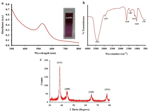 (a) UV-vis spectral analysis of biosynthesized gold nanoparticles; (b) Fourier transform infrared spectroscopy (FTIR) spectra of biosynthesized gold nanoparticles; (c) XRD pattern of biosynthesized gold nanoparticles.