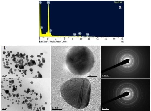 (a) Energy dispersive X-ray spectrum of biosynthesized gold nanoparticles; (b) High resolution transmission electron microscopy (HRTEM) images of biosynthesized gold nanoparticles (20 nm and 5 nm scale) and selected area electron diffraction (SAED) pattern.