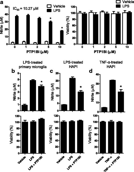 PTP1B inhibitor suppressed LPS-induced NO production in microglial cells. a. BV-2 microglial cells were treated with LPS (100 ng/ml) for 24 h after a 1 h pretreatment with the indicated concentration of PTP1Bi (PTP1B inhibitor). b. Primary microglial cells were pretreated with PTP1Bi (5 μM) and stimulated with LPS (50 ng/ml) for 24 h. c. HAPI cells were treated with PTP1Bi (10 μM) for 1 h and stimulated with LPS (100 ng/ml) (c) or TNF-α (10 ng/ml) (d) for 24 h. The nitrite content was measured using the Griess reaction, and PTP1Bi cytotoxicity was assessed by the MTT assay. The data were expressed as the mean ± SEM (n = 3). *p < 0.05 versus LPS or TNF-α only; analyzed by one-way ANOVA with Tukey's multiple comparison test