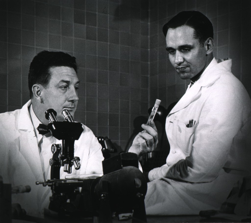 <p>Both: half-length; wearing lab coats; looking at test tube; microscope in foreground.</p>