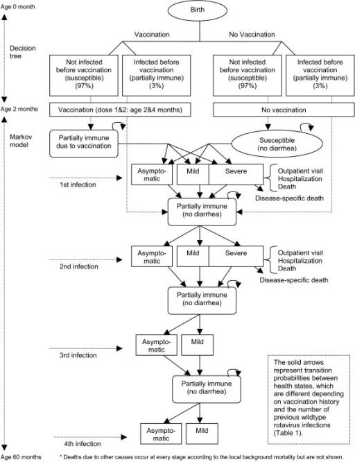 Natural History Of Human Rotavirus Infection