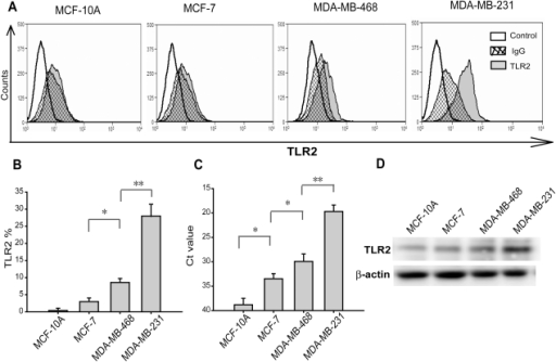 TLR2 was differentially expressed in breast cancer cells and untransformed breast cells.(A and B) Surface expression of TLR2 in four cell lines was analyzed by direct immunofluorescence using flow cytometer and IgG was used as control antibodies. The differences of TLR2 expression levels in breast cancer MCF-7, MDA-MB-468 and MDA-MB-231 cells were significant and TLR2 in untransformed MCF-10A cells was nearly undetectable. (C) TLR2 mRNA levels in the cell lines were measured by real-time PCR. RNA yield differences were calculated using GAPDH as an endogenous control and the comparative threshold cycle (Ct value). MDA-MB-231 cells showed the lowest Ct value among these cell lines. (D) TLR2 protein levels were analyzed by Western-blotting. Values were expressed as mean ± SD (n = 6 *p<0.05; **p<0.01).