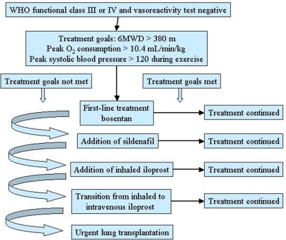 Goal-oriented treatment algorithm for patients with pulmonary arterial hypertension (PAH). 6MWD, 6-min walking distance. Reproduced with permission from Hoeper et al. (2005).