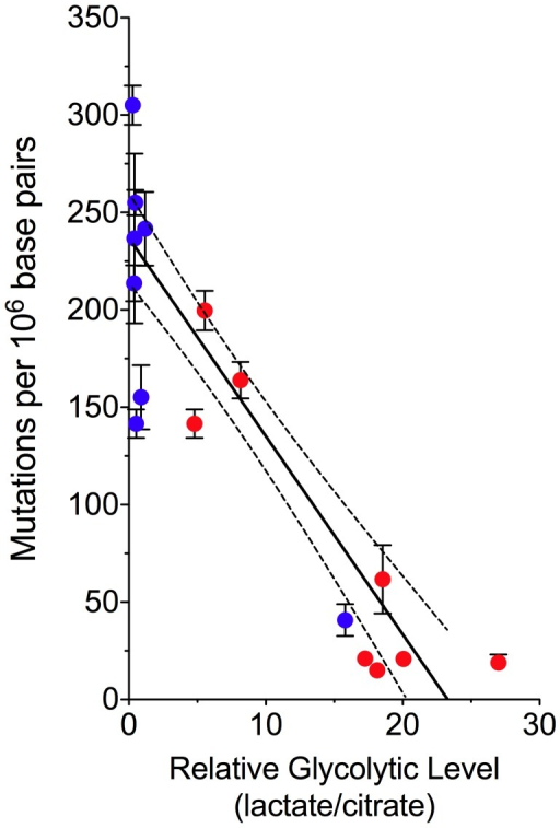 Decreased mtDNA Mutagenesis Is Coupled to a Shift in Glucose Metabolism.Normal (blue) and tumor (red) patient-matched colorectal tissue comparison of the mean mtDNA mutation burden (± s.e.m.) as a function of the tissue metabolic signature. This plot illustrates the inverse correlation between the level of mitochondrial respiration and mutagenesis (linear regression with 95% confidence intervals, slope −10.17±0.9894, significance of non-zero slope P<0.0001, R2 = 0.71).