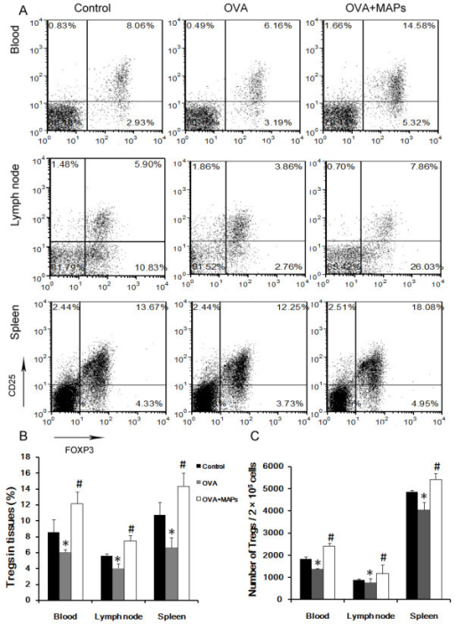 FCM detection of CD4+CD25+Foxp3+Treg cells in peripheral blood, mediastinal draining lymph nodes, and spleen of mice. In vivo OVA challenge could decrease the level of Treg cells in the mice. However, the levels of local and peripheral CD4+CD25+Foxp3+ Treg cells was about 0.5-1.0-fold increase after OVA323-339MAP treatment (gating on CD4+ T cell populations, * compared with the control group, P < 0.05; # compared with the OVA group, P < 0.05). Data represent one of three independent experiments.