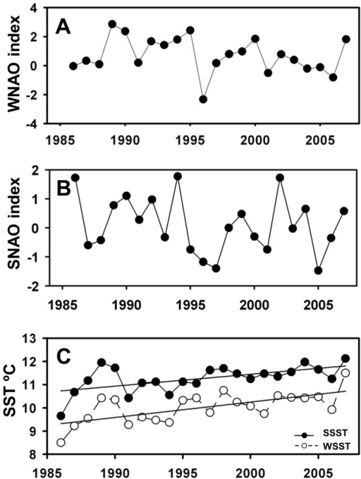Environmental variables used for model construction.A: Winter NAO index; B: Spring NAO index; C: Sea Surface Temperature (°C). Fitted linear regressions indicate significant temporal trends.