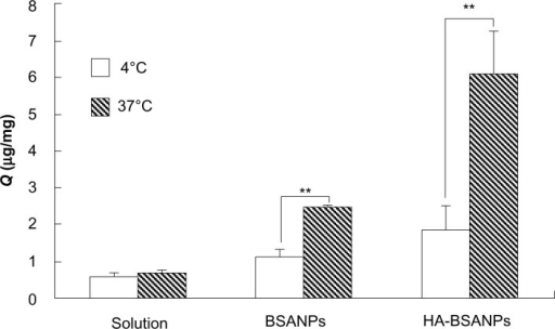 The effect of temperature on the in vitro cell uptake of nanoparticles by chondrocyte.Note: **P<0.01, the Q of 4 °C compared with that of 37 °C.Abbreviations:Q, uptake of the unit cell value; BSANPs, bovine serum albumin nanoparticles; HA-BSANPs, hyaluronic acid-coated BSANPs.