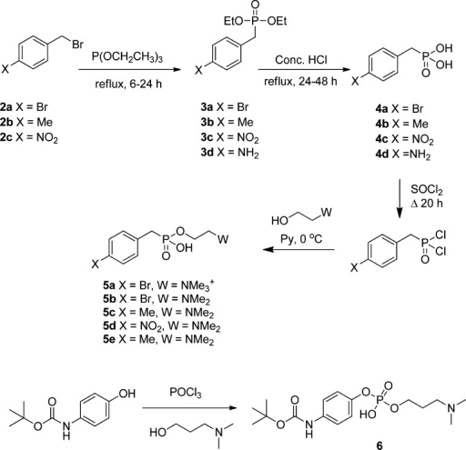 Synthesis of Phosphorus-Containing SMAs