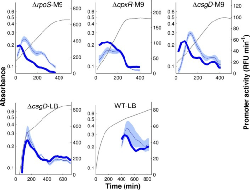 Regulation function of tar fitted to reporter gene data when replacing protein concentrations by promoter activities.The regulation function of Eqs. 1–2 was fitted using the promoter activities for tar, fliA, and flgM shown in Fig. 3, where the latter two replace the concentrations of FliA and FlgM, respectively. Model predictions are in dark blue (thick solid line), tar reporter data are in light blue (thin solid line and shaded area). The parameters were estimated using a multistart global optimization algorithm (see Methods and materials for details). The best fit returns the value Q = 33.4 for the objective function, for the parameter vector (k0,k1,n,θ,K) = (7.6,853,1,663,14615). Confidence intervals for the parameter values are reported in Text S10.