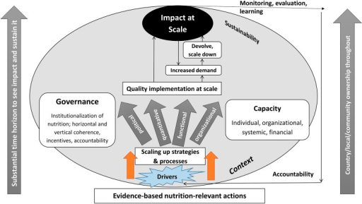 Theory of change for scaling up impact on nutrition.
