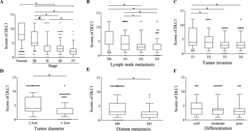 Expression of DLC1 is reduced in more advanced GC. Immunoreactivity scores of DLC1 were lower in GC samples with (A) later TNM stage, (B) increased lymph node metastasis, (C) increased tumor invasion, (D) larger tumor diameter and (E) increased distant metastasis. (F) No significant difference was observed among patients with GC with different degrees of differentiation. The lower and upper bars of the box plot represent the 10 and 90% percentile values. Error bars represent the 10% and 90% percentiles and dots below and above the box plots indicate values below or above the 10% and 90% percentiles, respectively. *P<0.05, #P<0.01, +P<0.001. GC, gastric cancer; DLC1, deleted in liver cancer-1; TNM, tumor-node-metastasis.
